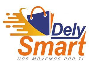 DELYSMART – Delivery